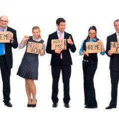 Companie de incredere cauta angajati pe masura