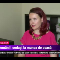 Putine firme din Romania apeleaza la munca la distanta